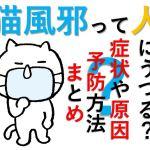 猫風邪は人間にうつるの?症状や原因は?予防法を教えて!