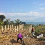 Pillars of yoga retreat center overlooking Lake Atitlan in Guatemala