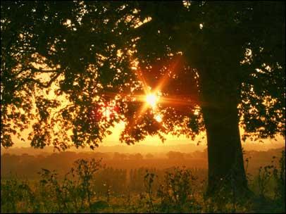 sunrise_01_406x304