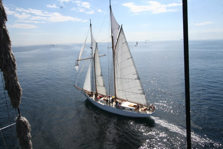 Alcyon, a beautiful schooner.