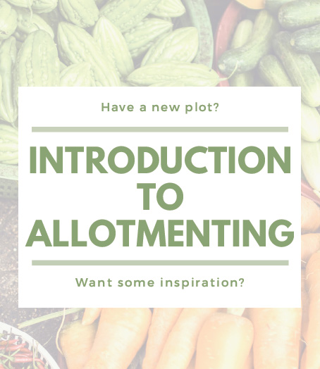 Introduction to allotmenting