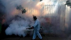 Cum a scăpat Dolhasca de virusul Zika
