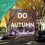 Autumn 2017 activities in Sasktoon