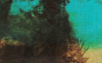 Bajo la hiedra, disco debut de Otwai