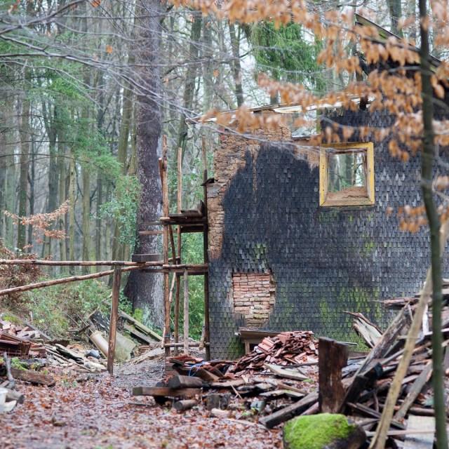 2012-12-28 D700 Waldspaziergang Wächtersbach 136