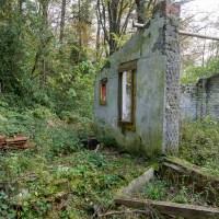 Ruheorte - Verlassenes Haus im Wächtersbacher Wald
