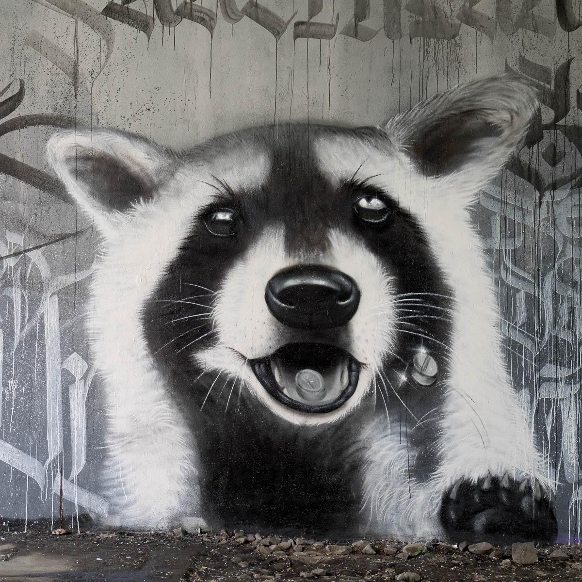 Frankfurt - Graffiti unter der Friedensbrücke - Von Waschbären, Monotonie und Tod