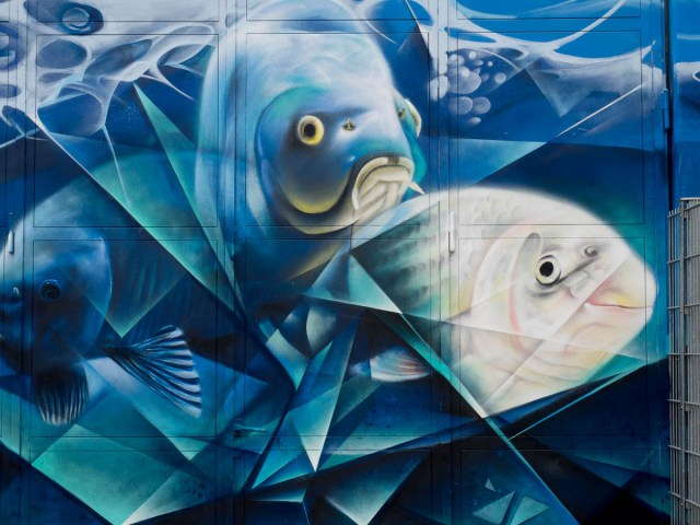 2015-06-18 EM1 Graffiti Mainz-Kastel MOS 2015 0031