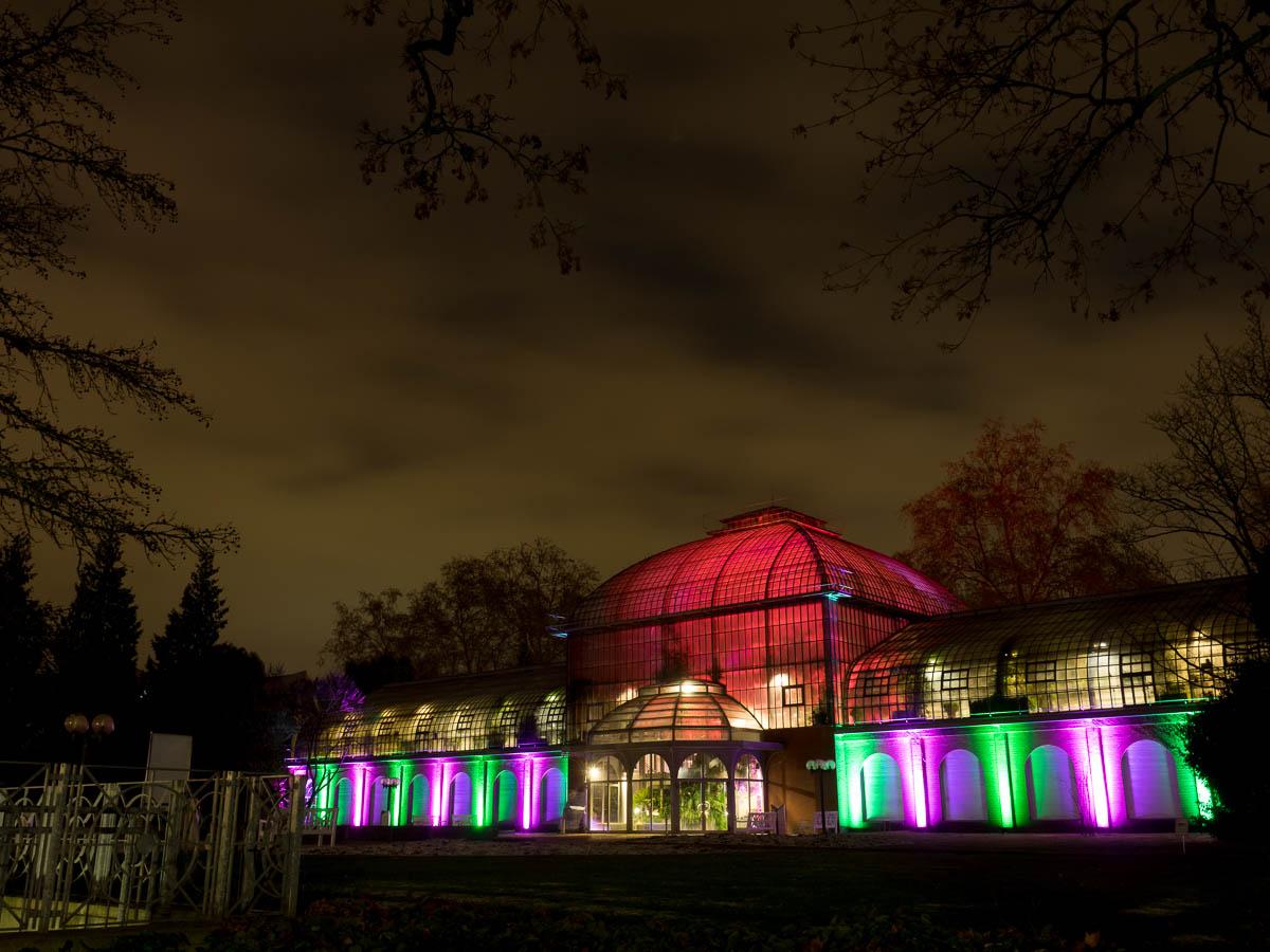 Frankfurt - Winterlichter im Palmengarten 2016 (12 Bilder)