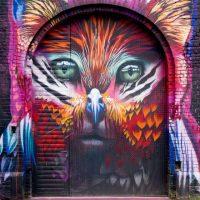 Graffiti in Frankfurt - Artwork von Case im Hof hinter der Naxoshalle
