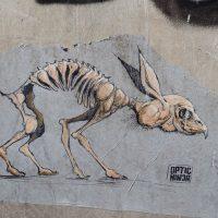 Street Art in Dresden in der Äußeren Neustadt