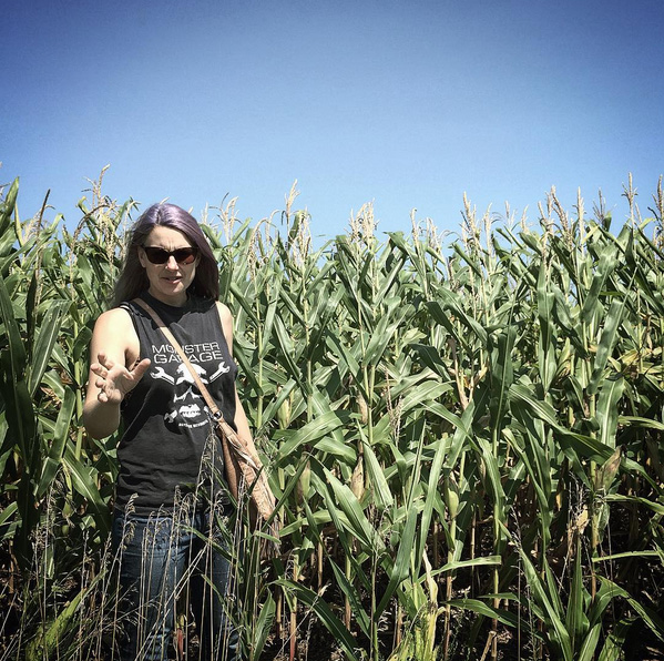 dosfamily-cornfields
