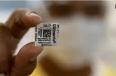 হাইড্রোক্সিক্লোরোকুইন পরীক্ষা বাতিল বিশ্ব স্বাস্থ্য সংস্থার, ব্রাজিলের গোঁ