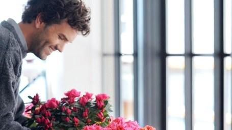 buchete-flori-online