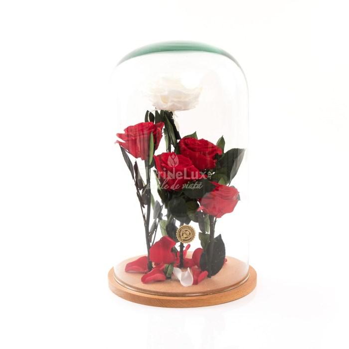 Ce flori se ofera de ziua indragostitilor