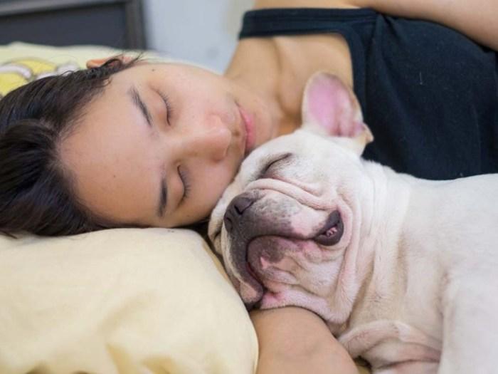 О полезности дневного сна