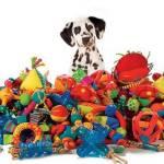 Как правильно выбирать игрушки для собак?