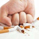 Как рассказать школьнику о вреде курения