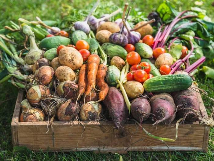 Как правильно хранить урожай?
