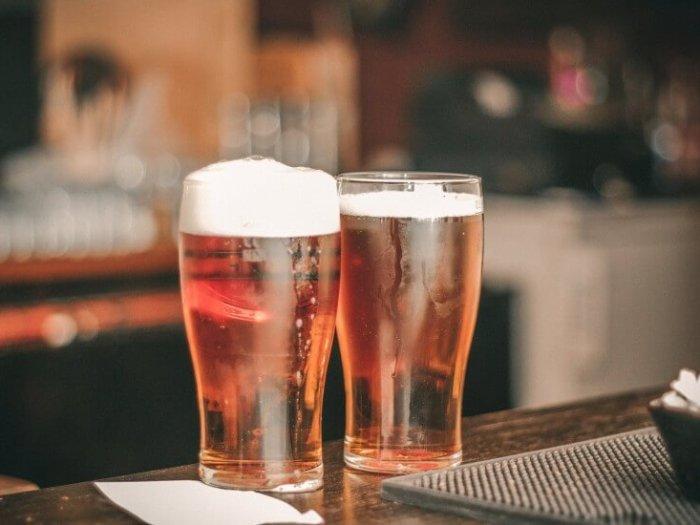 Почему вредно пить пиво?