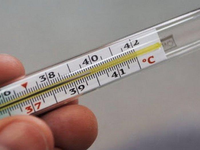 Чтобы проверить свою щитовидку, нужен только градусник!
