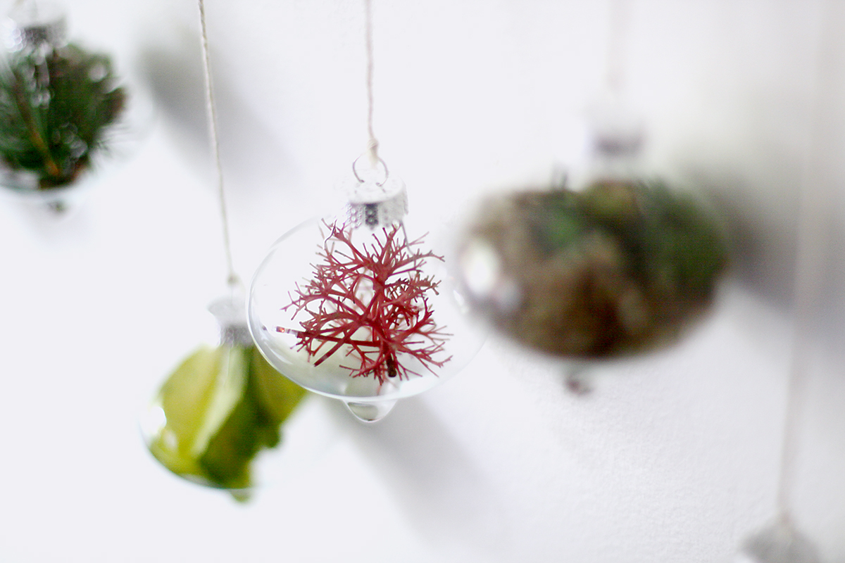nature_ornaments_hanging_2