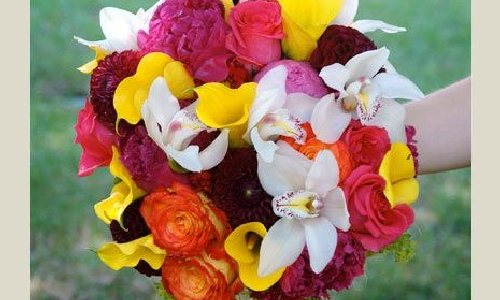 Dostavka-cveti.ru — доставка цветов по Москве | канадские ...