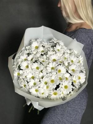 Цветы - Хризантема кустовая 15шт