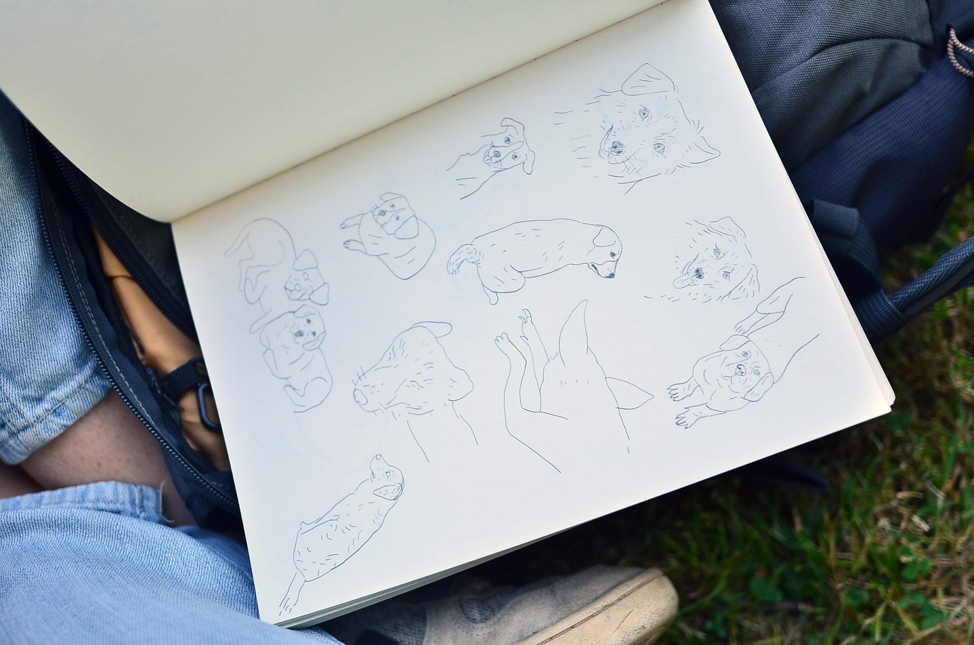 Lea decan, artiste, juin, dessin
