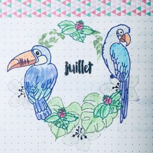 page-garde-bullet-journal-juillet18