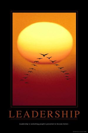 leadership-flyingbirds