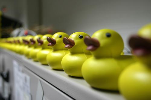 duckrow