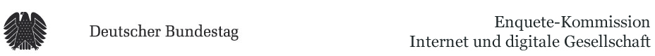 Internet Enquete Logo