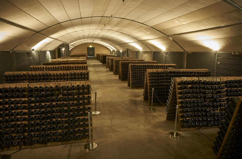 Domain Chandon cellar