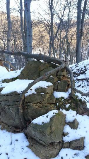 zimska-fruskac-setnja-16