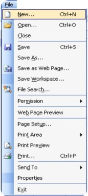 Microsoft Excel 2003 : File Menu and Its Commands-1 1