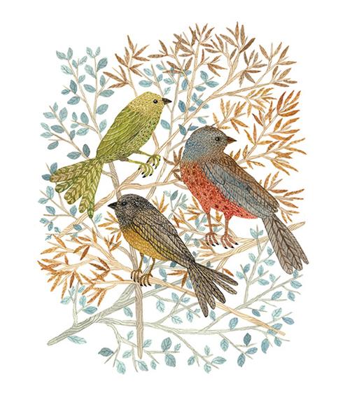 songbirds by Holly Ward Bimba
