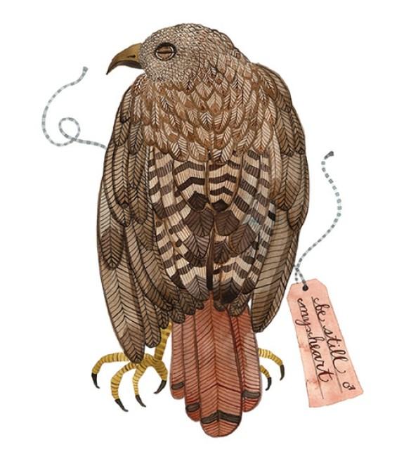 Red Tail Hawk by Holly Ward Bimba