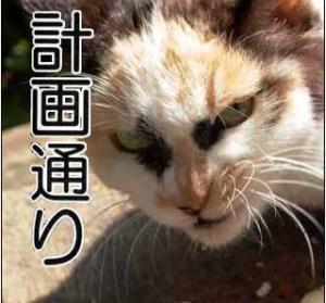Từ vựng thông dụng trong tiếng Nhật