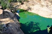 Lago de crocodilos já adultos, esses servem para reprodução