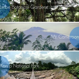 Cameroonian Tourism: The Sleeping Giant