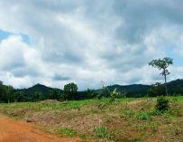Tellement contrasté, mon Cameroun à moi.