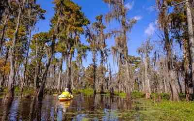 10 Awesome Reasons to visit Louisiana right now!