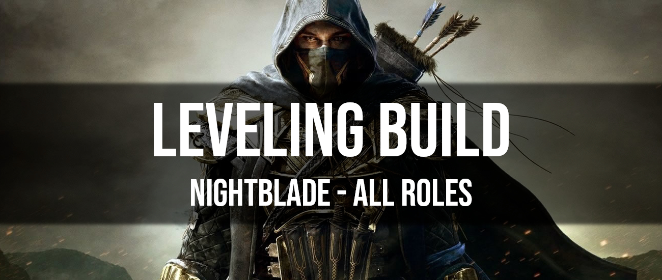 ESO Nightblade Leveling Build - Dottz Gaming