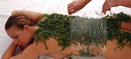 Soins aux algues à la thalasso de Concarneau