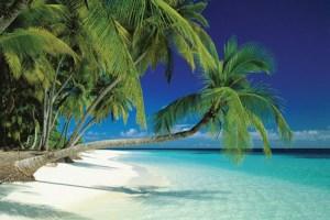 tropical island-7