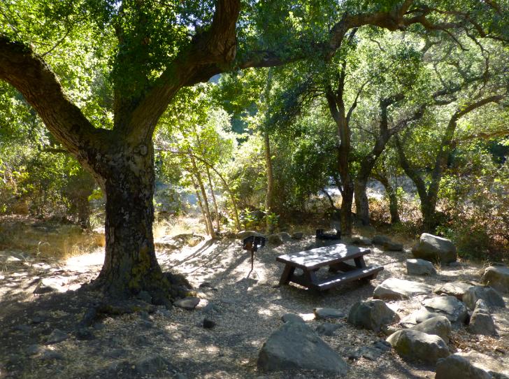 Girls' Weekend - Camping in Ojai and Santa Barbara Day Trip