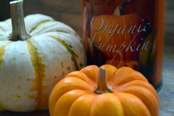 OrganicCannedPumpkin_AlyssaCurran