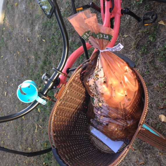 Why yes, that is a 10 pound sack of potatoes in my bike basket.