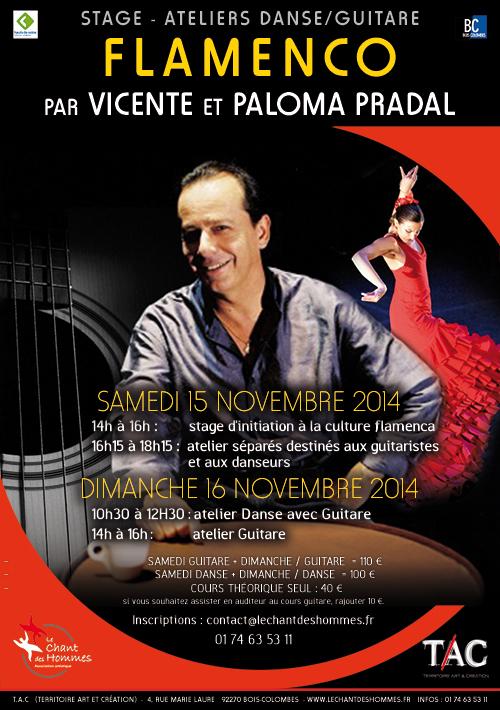 flyer_flamenco_novermbre_2014